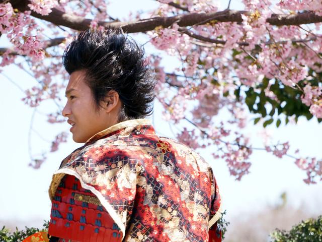 桜守武将です